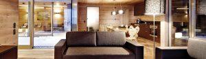 DDU large gamme de produits pour le bois